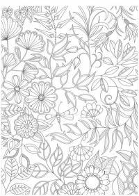 Волшебные цветы со стрекозами Раскраски с цветами распечатать бесплатно