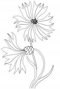 Волшебные васильки Разукрашки цветы