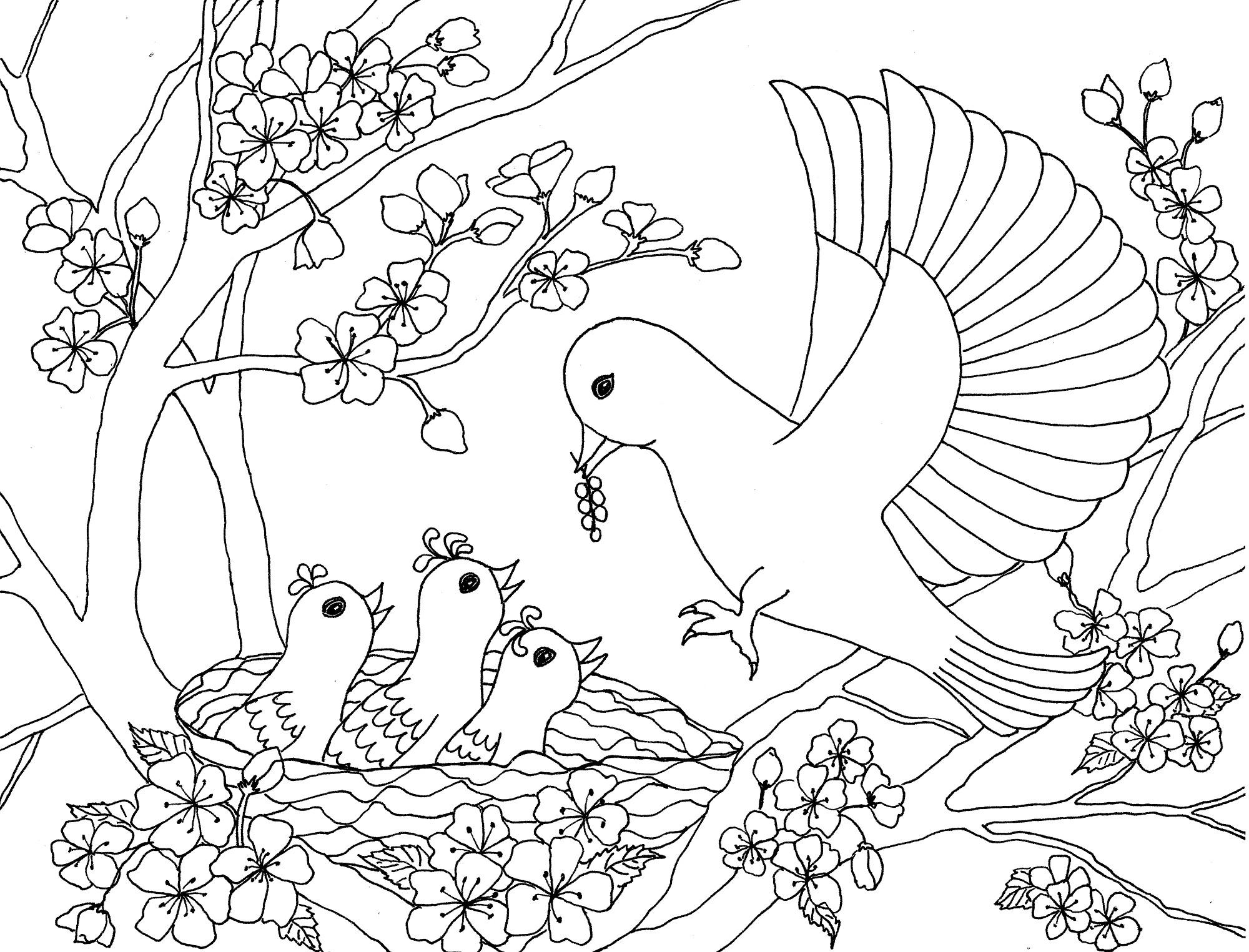 Птица с птенцами на цветущем дереве Раскраски цветов скачать