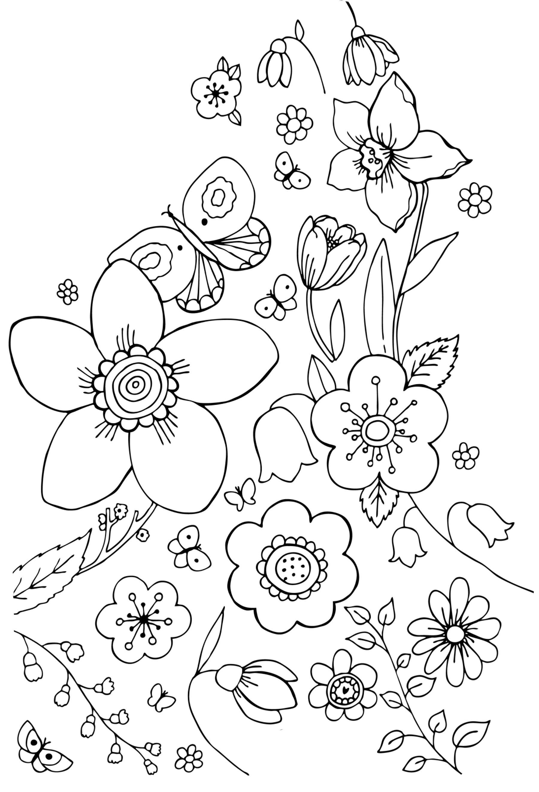 Клумба разных цветов с бабочками Красивые раскраски цветов