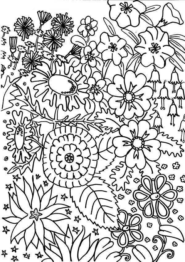 Клумба множества разных красивых цветов Красивые раскраски цветов