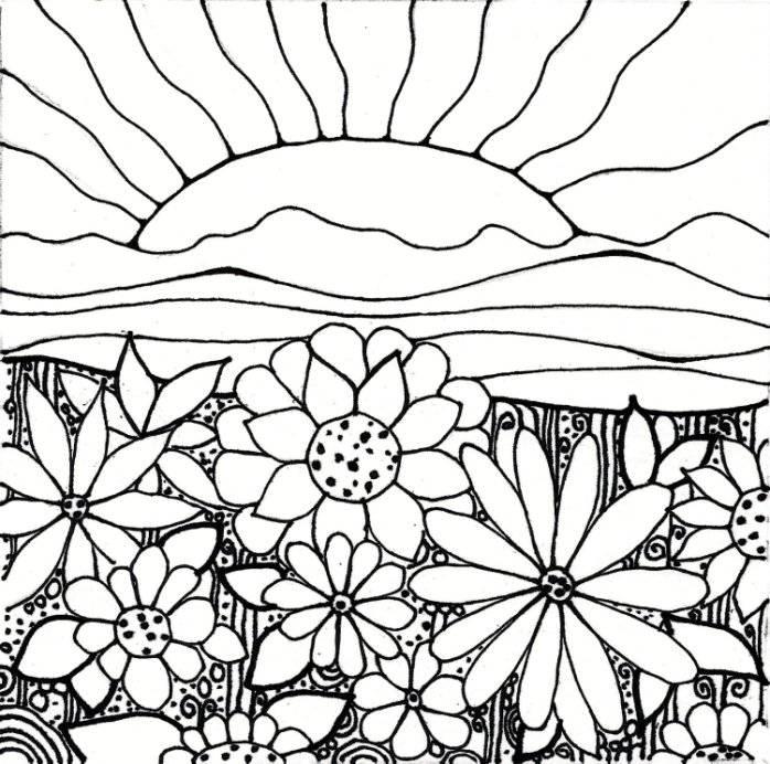 Клумба цветов на закате Красивые раскраски цветов