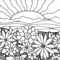 Клумба цветов на закате