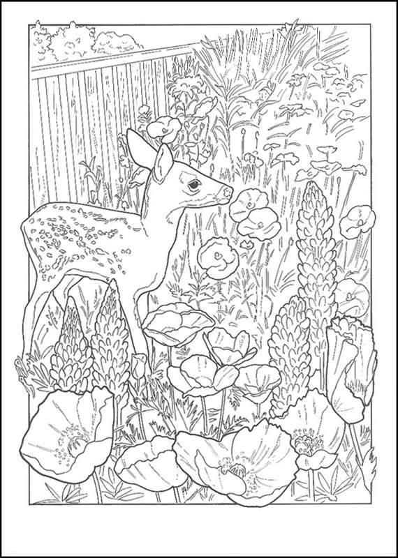 Олененок в цветах, маки Распечатываем раскраски цветы бесплатно