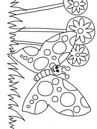 Большая бабочка возле цветов Красивые раскраски цветов