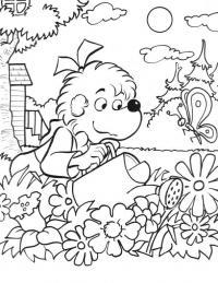Медвежонок поливает клумбу с цветами