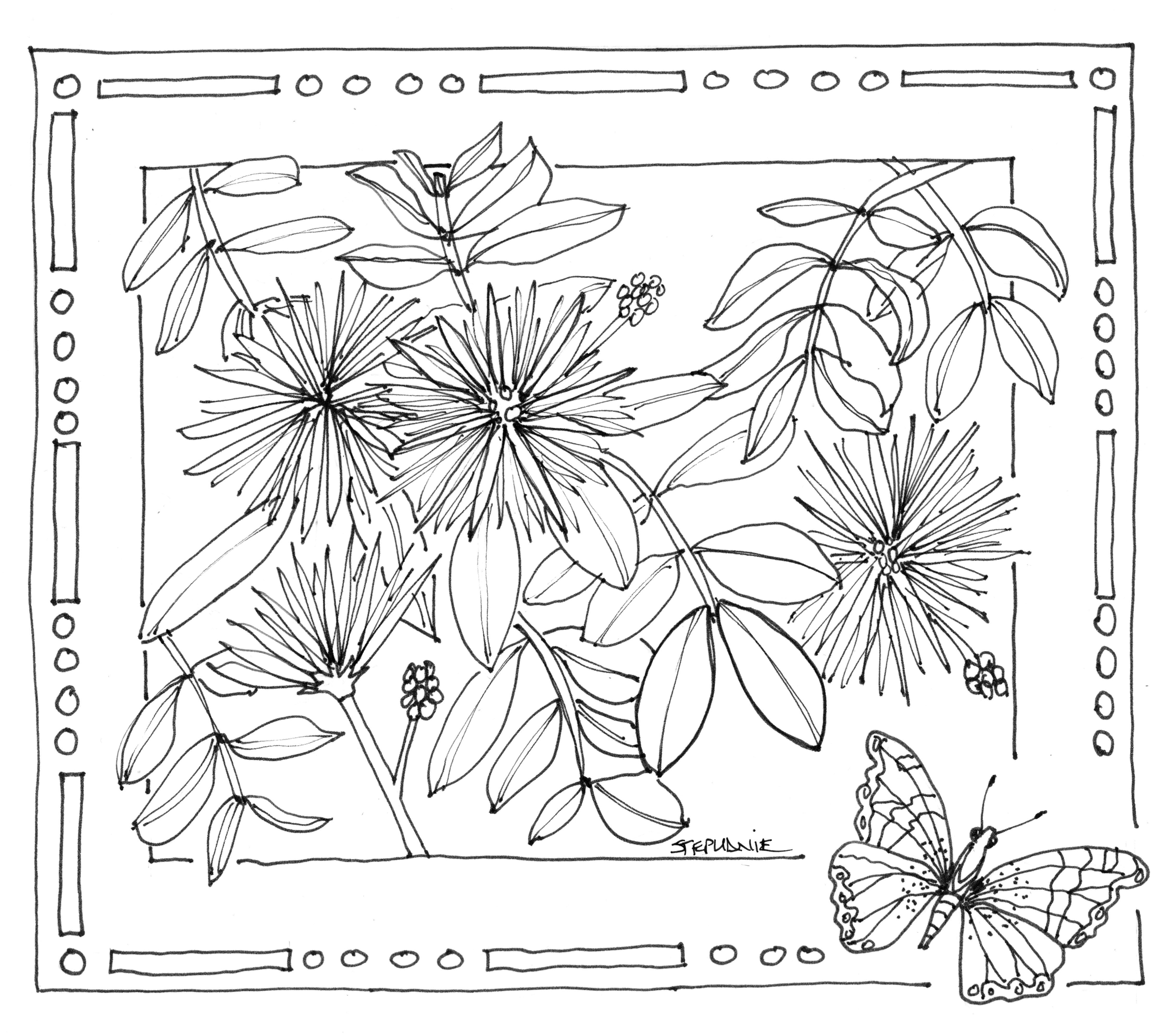 Клумба цветов в рамке с бабочкой Раскраски с цветами распечатать бесплатно