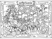 Клумба цветов, подсолнухи, земляника и овощи Раскраски с цветами распечатать бесплатно