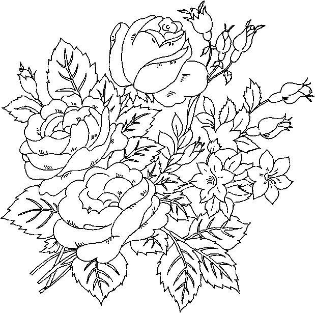 Красивые цветущие розы с бутонами и маленькими цветами Раскраски с цветами распечатать бесплатно