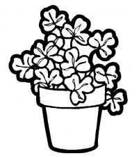Горшок с клевером Детские цветы распечатать