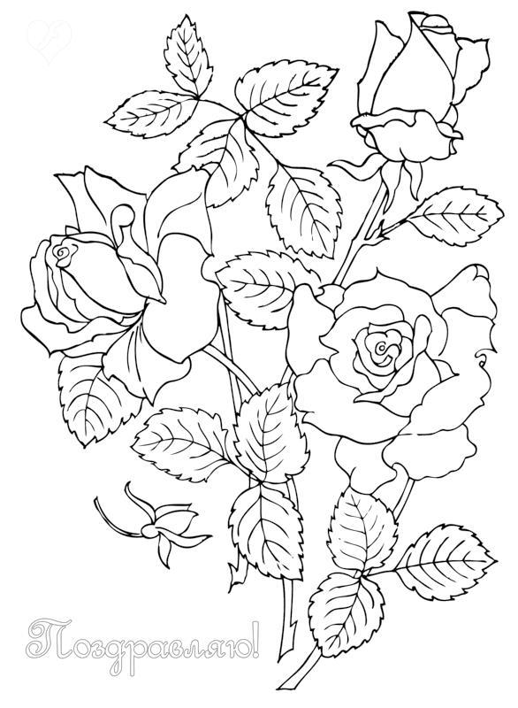 Открытка Открытки с розами поздравляю Раскраски красивые цветыраскраски цветы