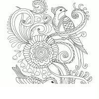 Узор птицы и цветы Новые раскраски цветы