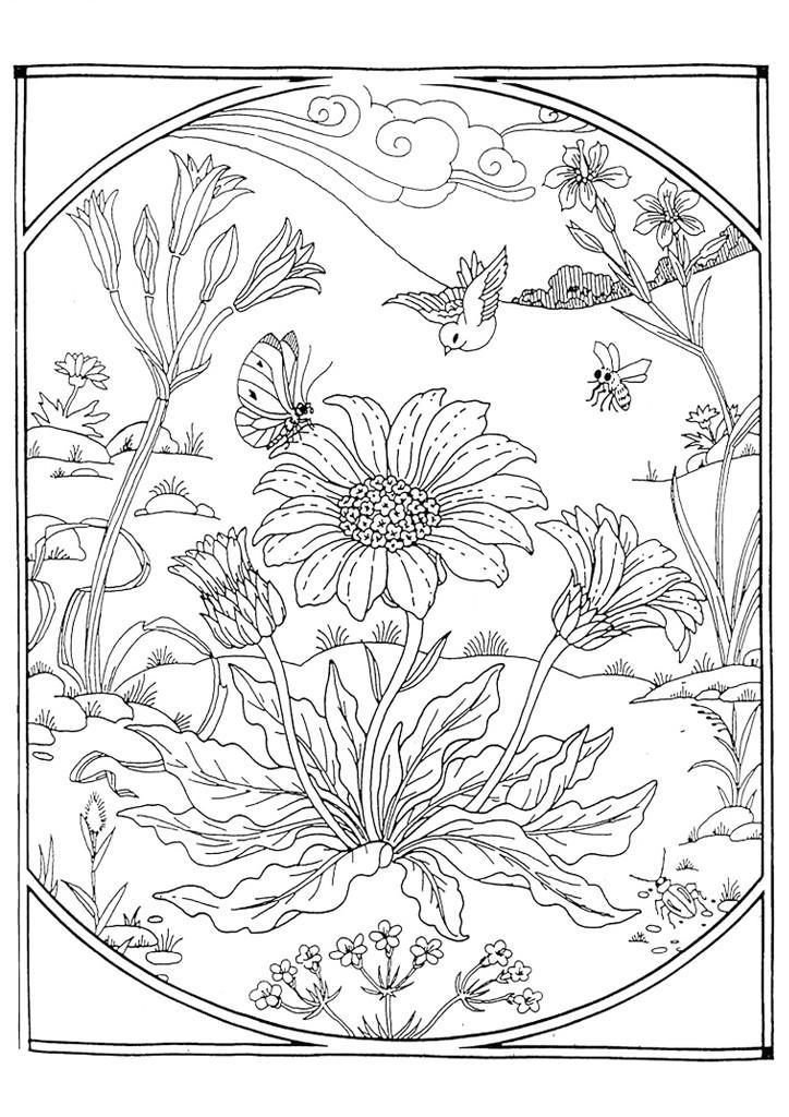 Бабочка Арт терапия клумба цветов Черно белые раскраски цветовраскраски цветы