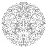 Арт терапия колибри в цветах Раскраски с цветами распечатать бесплатно