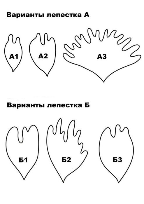 Большие пионы из бумаги своими руками схемы шаблоны 14