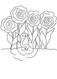 Пион и червячек Фото раскраски цветы