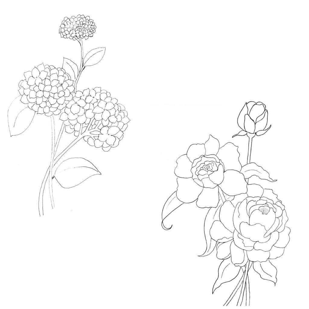 Пион и маленькие цветочки Раскраски детские с цветами
