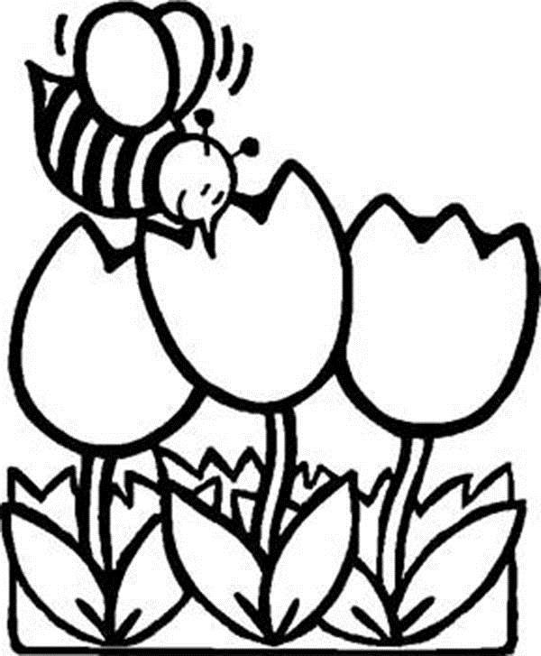 Тюпаны с пчелкой Фото раскраски цветы
