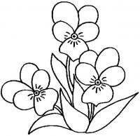 Анютины глазки Раскраски цветочки для детей бесплатно