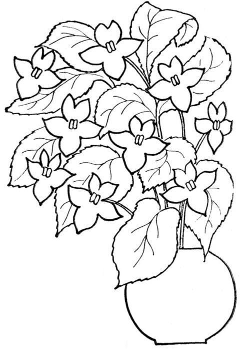 Контур цветка цветов в вазе Раскраски с цветами распечатать бесплатно