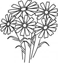 Цветы ромашки цветы раскраски онлайн бесплатно