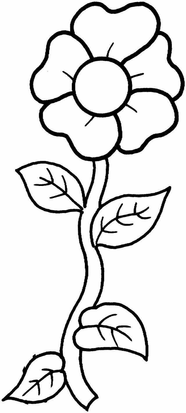 Цветыок вьющийся цветы раскраски онлайн бесплатно