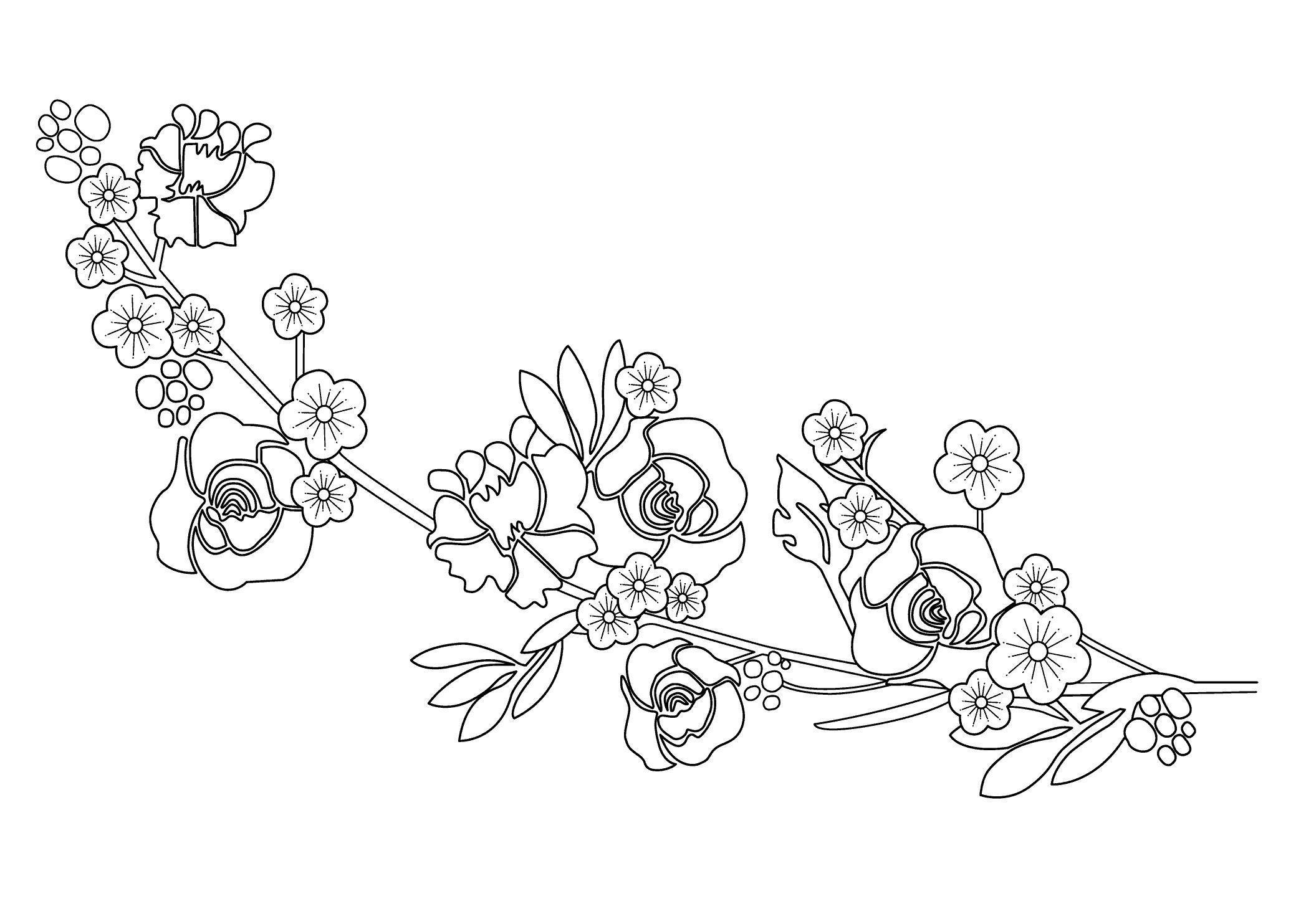 Цветы ветка с цветами цветы раскраски онлайн бесплатно