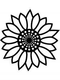 Цветы подсолнух Распечатываем раскраски цветы бесплатно