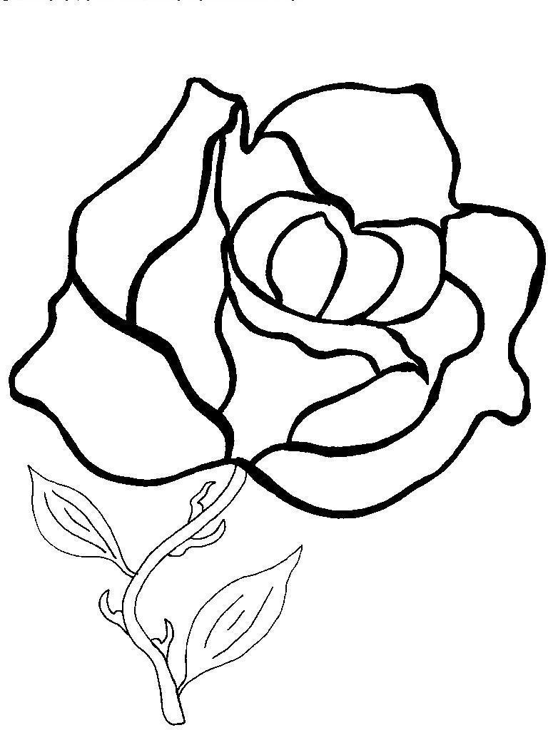 Цветы роза Фото раскраски цветы