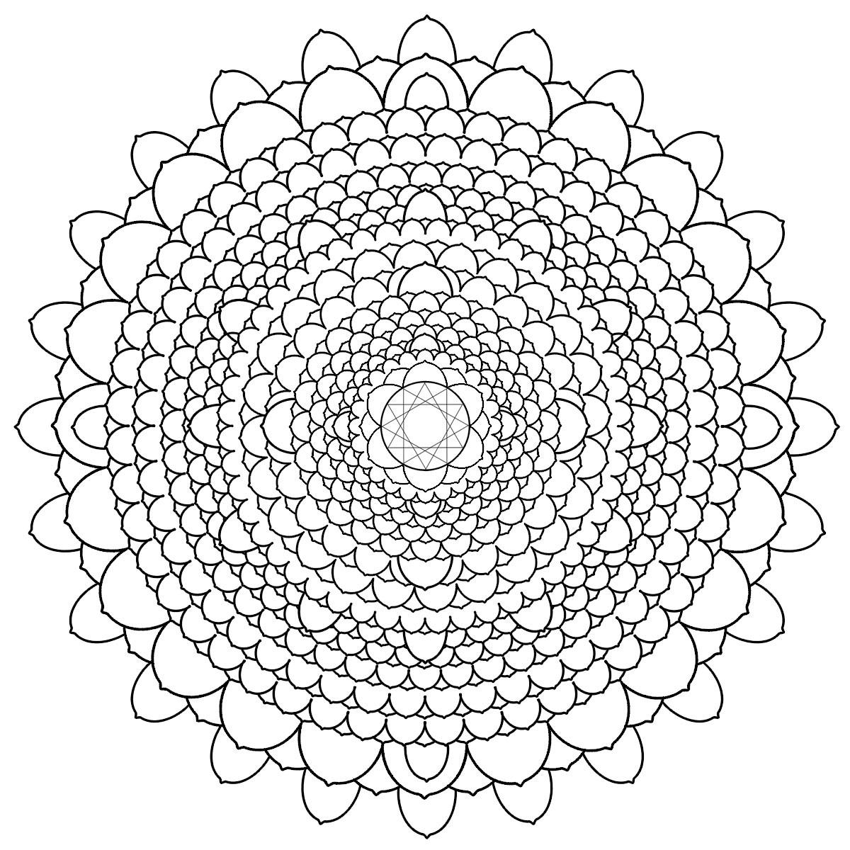 Сложные кружевные цветы Раскраски цветов скачать