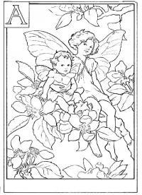 Сложные, феи в яблоневых цветах Раскраски с цветами распечатать бесплатно