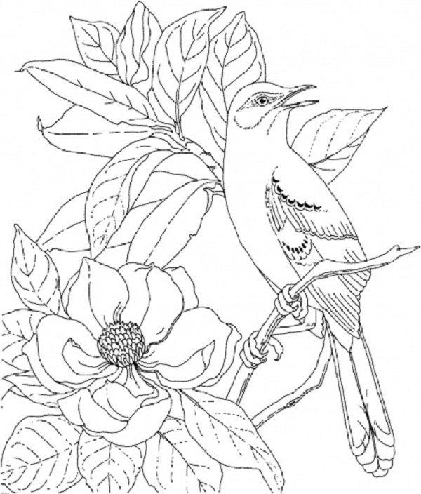 Цветы, птица на шиповнике цветы раскраски онлайн бесплатно
