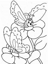 Цветы, бабочки на цветах Фото раскраски цветы