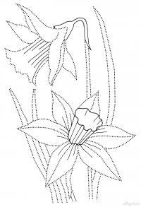 Весенние цветы нарциссы Разукрашки цветы