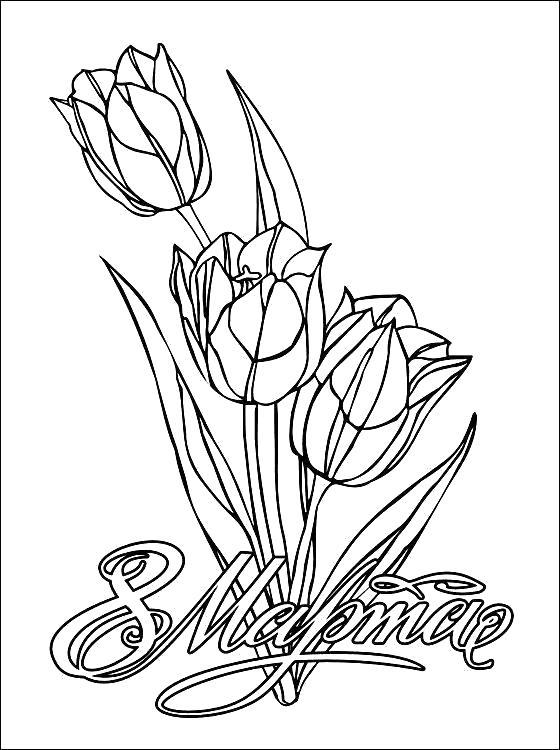 Весенние цветы, тюльпаны на 8 марта Раскраски с цветами распечатать бесплатно