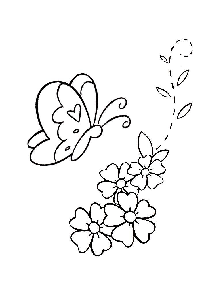 Летние цветы Раскраски цветов бесплатно