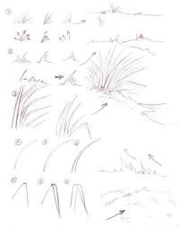 Как нарисовать различную траву Раскраски цветочки для детей бесплатно