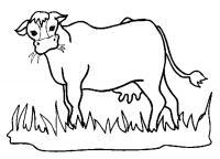 Корова жует траву на лужайке Раскраски с цветами распечатать бесплатно