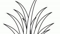 Трава Раскраски цветочки для детей бесплатно