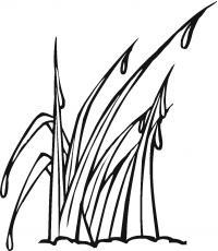 Трава в росе Раскраски цветочки для детей бесплатно