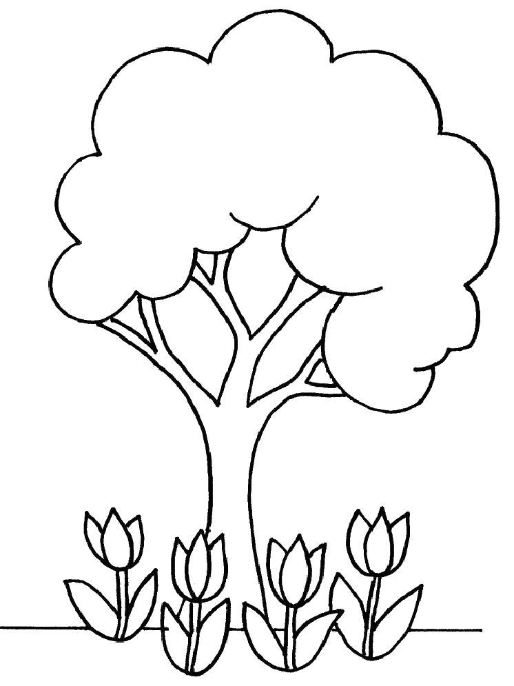 Тюльпаны под деревом Раскраски с цветами распечатать бесплатно