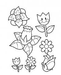 Контуры цветов для аппликации Раскраски с цветами распечатать бесплатно