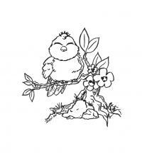 Воробей сидит на ветке цветущего дерева Раскраски с цветами распечатать бесплатно