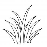 Трава как сделать аппликацию из травы