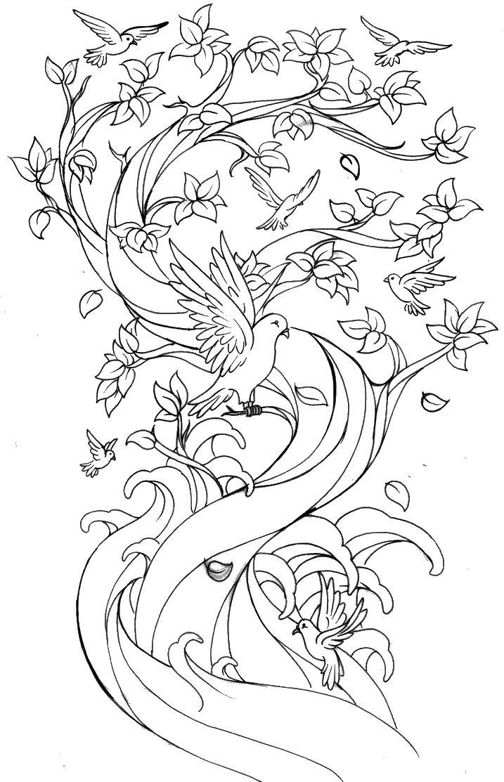 Птицы на дереве с цветами Разукрашки цветы
