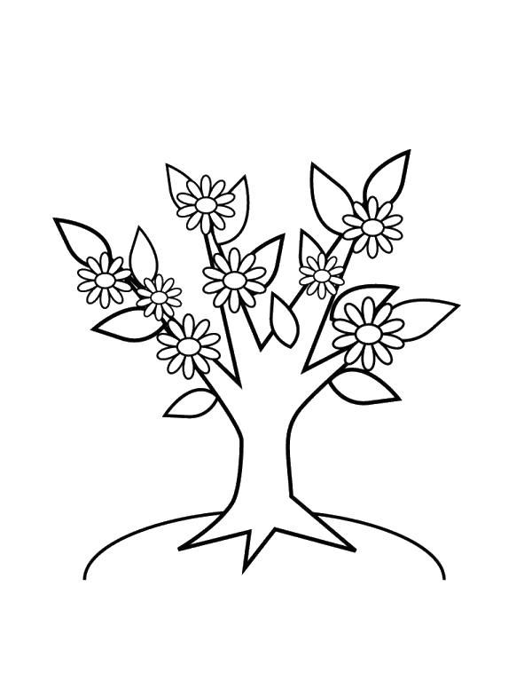 Волшебное дерево цветет Раскраски цветы онлайн скачать и распечатать