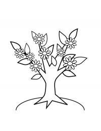 Волшебное дерево цветет Новые раскраски цветы