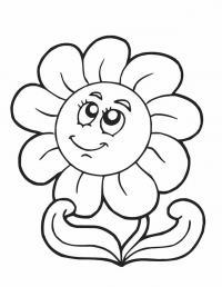 Подсолнух Фото раскраски цветы