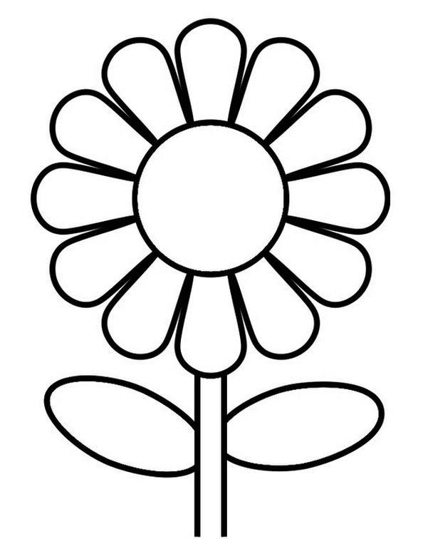 Цветок ромашка для детей картинка