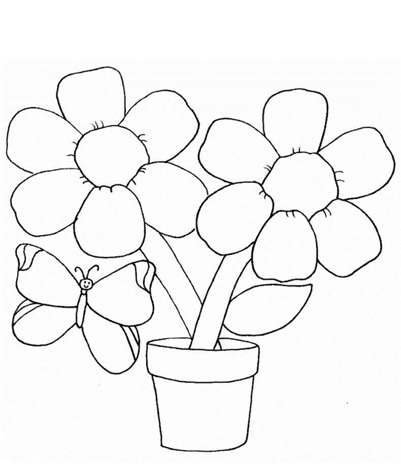 Цветы в горшке и бабочка Раскраски детские с цветами